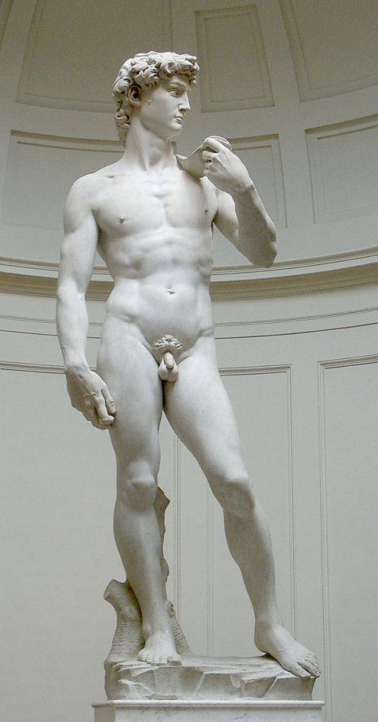 Il David è una celebre scultura del Rinascimento italiano, realizzata in marmo di Carrara da Michelangelo Buonarroti, databile tra il 1501 e l'inizio del 1504 e conservato nella Galleria dell'Accademia a Firenze.