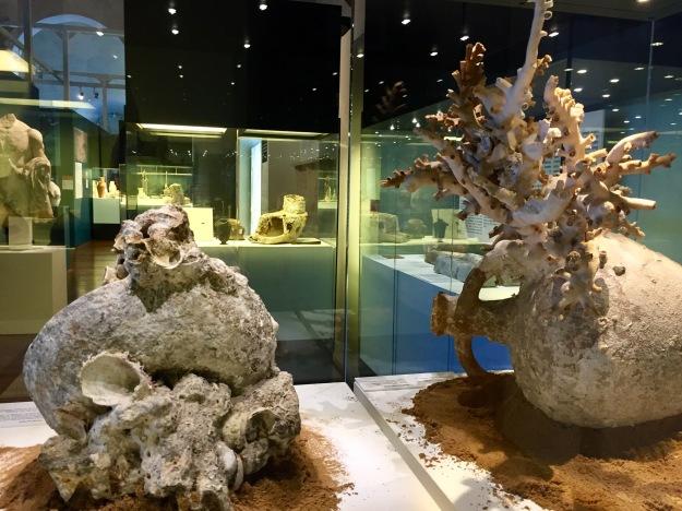 Anfore con coralli, Mirabilia Maris. Tesori dai mari di Sicilia, mostra a Palermo (2017). Foto SAM