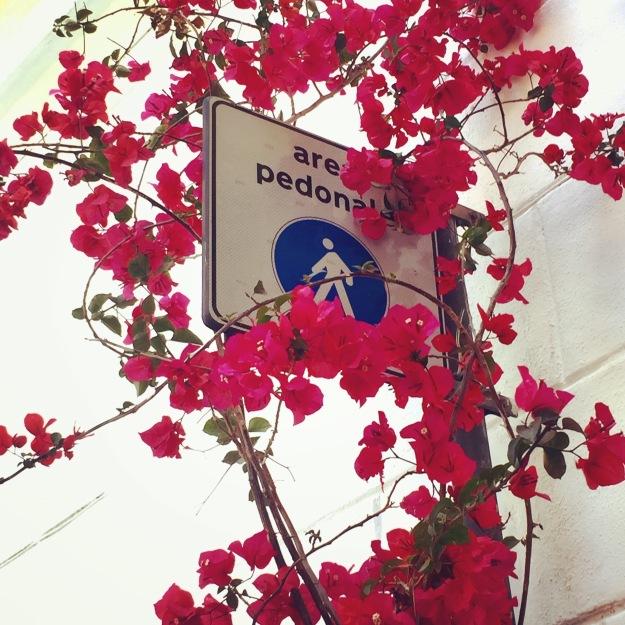 Via dei Coronari, vicino Palazzo Del Drago, Roma. Foto Safarik Art Magazine
